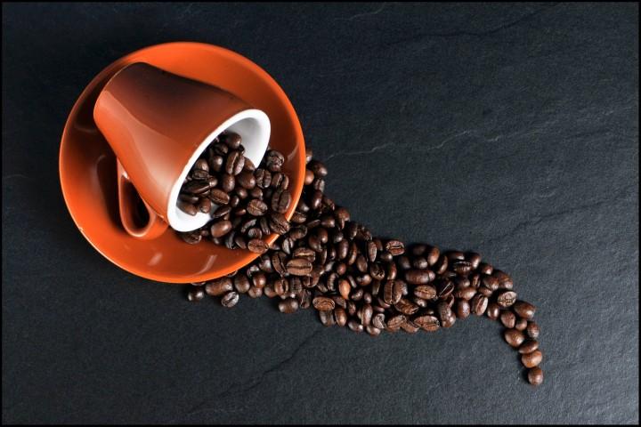 filiżanka i ziarna kawy - ekspresy Jura. Sabro