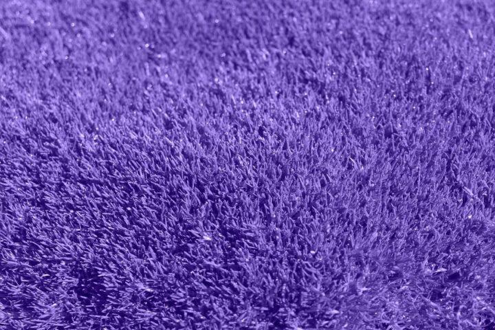 Odkurzacz bezprzewodowy wyczyści każdy dywan