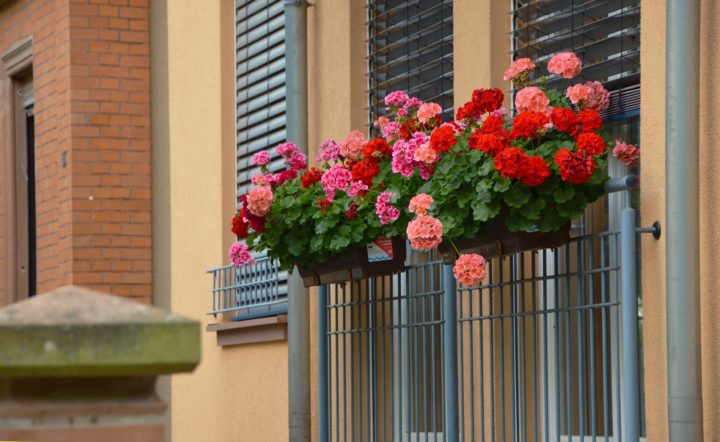doniczka balkonowa na poręcz