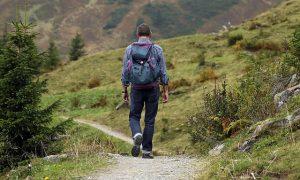 Na łagodnych ścieżkach stosowanie kijów trekkingowych nie jest wskazane.
