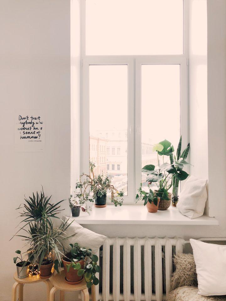 jak urządzić ekologiczne mieszkanie