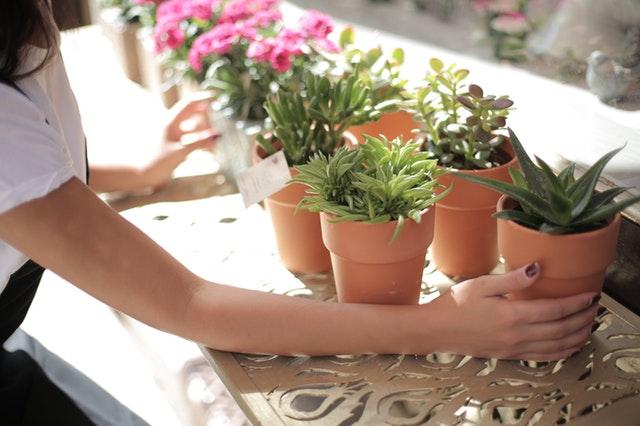 Doniczki ogrodowe pozwolą Ci wyeksponować kwiaty i rośliny w Twoim ogrodzie i stworzyć w nim przytulny klimat