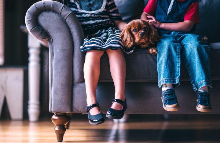 Buty dla dzieci w rozmiarze 35 na ceneo